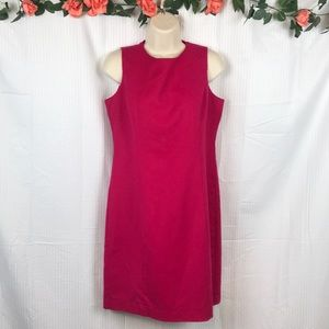 Hot Pink Talbots Petites Dress